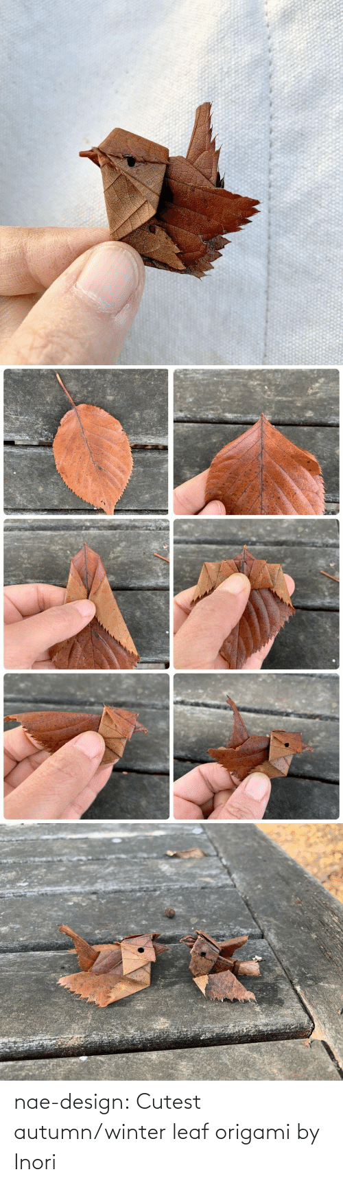 Winter: nae-design: Cutest autumn/winter leaf origami by Inori