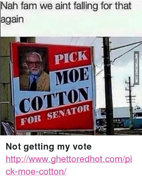 """Ghettoredhot: Nah fam we aint falling for that  again  PICK  MOE  COTTON  FOR SENATOR <p><strong>Not getting my vote</strong></p><p><a href=""""http://www.ghettoredhot.com/pick-moe-cotton/"""">http://www.ghettoredhot.com/pick-moe-cotton/</a></p>"""