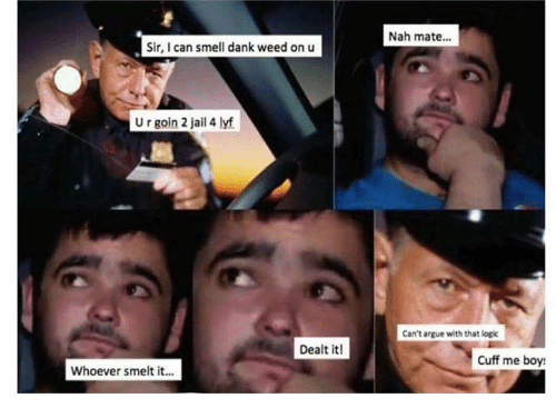 dank weed: Nah mate...  Sir, I can smell dank weed on u  U r goin 2 jail 4 lyf  Can't argue with that logic  Dealt it!  Cuff me boy  Whoever smelt it...