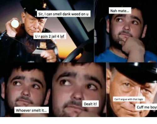 dank weed: Nah mate...  Sir, I can smell dank weed on u  U r goin 2 jail 4 lyf  Can't argue with that logic  Dealt it!  Cuff me boys  Whoever smelt it...