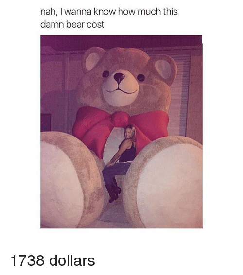 Girl Memes: nah, wanna know how much this  damn bear cost 1738 dollars