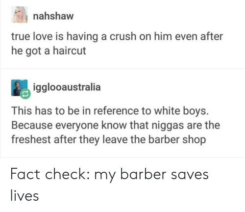 Fact Check: nahshaw  true love is having a crush on him even after  he got a haircut  igglooaustralia  This has to be in reference to white boys.  Because everyone know that niggas are the  freshest after they leave the barber shop Fact check: my barber saves lives