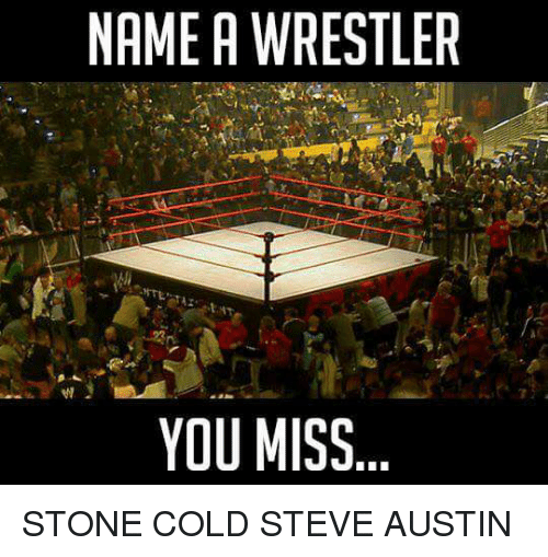 Memes, Stone Cold Steve Austin, and Cold: NAME A WRESTLER  YOU MISS STONE COLD STEVE AUSTIN