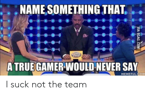 Name Something That: .NAME SOMETHING THAT.  A TRUE GAMER WOULD NEVER SAY  MEMEFUL COM I suck not the team