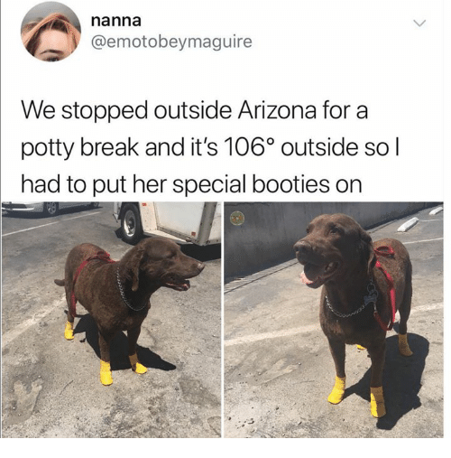 potty: nanna  @emotobeymaguire  We stopped outside Arizona for a  potty break and it's 106° outside so l  had to put her special booties on