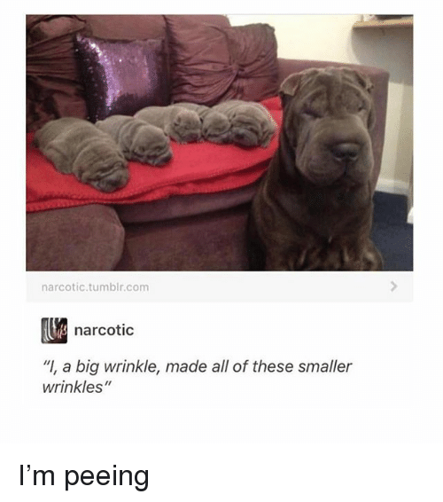 "wrinkle: narcotic.tumblr.com  narcotic  ""I, a big wrinkle, made all of these smaller  wrinkles"" I'm peeing"