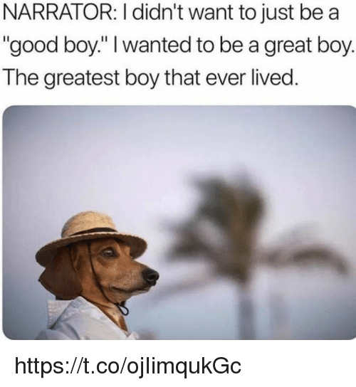 "Memes, Good, and Boy That: NARRATOR: I didn't want to just be a  ""good boy."" wanted to be a great boy.  The greatest boy that ever lived https://t.co/ojIimqukGc"