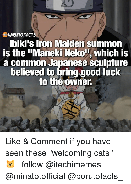 "Summone: NARW10 FACTS  Ibiki's Iron Maiden summon  is the ""Maneki Neko T, which is  a common Japanese sculpture  believed to bring good luck  to the owner. Like & Comment if you have seen these ""welcoming cats!"" 🐱 