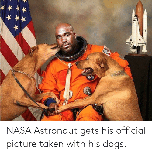 Dogs: NASA Astronaut gets his official picture taken with his dogs.