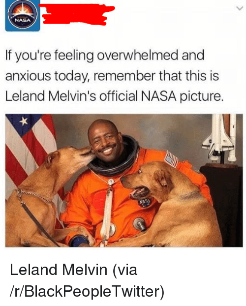 melvins: NASA  If you're feeling overwhelmed and  anxious today, remember that this is  Leland Melvin's official NASA picture. <p>Leland Melvin (via /r/BlackPeopleTwitter)</p>