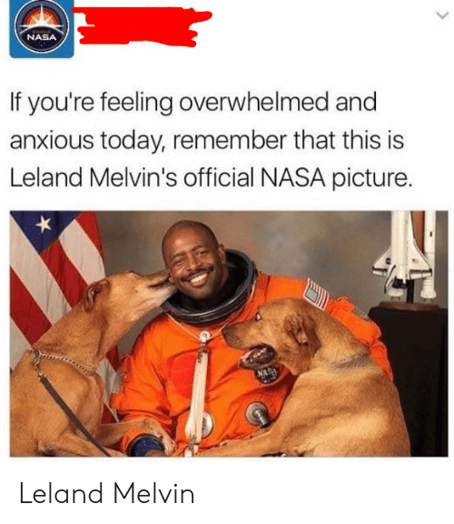 melvins: NASA  If you're feeling overwhelmed and  anxious today, remember that this is  Leland Melvin's official NASA picture. Leland Melvin
