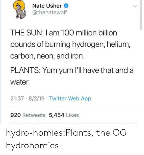 plants: Nate Usher  @thenatewolf  THE SUN: I am 100 million billion  pounds of burning hydrogen, helium,  carbon, neon, and iron.  PLANTS: Yum yum 'll have that and a  water.  21:37 8/2/19 Twitter Web App  920 Retweets 5,454 Likes hydro-homies:Plants, the OG hydrohomies