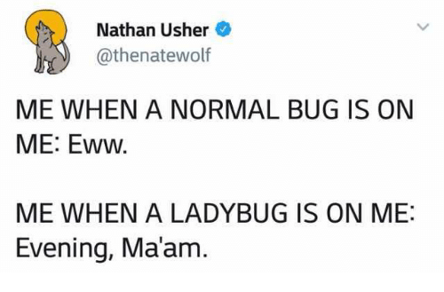 Usher: Nathan Usher  @thenatewolf  ME WHEN A NORMAL BUG IS ON  ME: Eww  ME WHEN A LADYBUG IS ON ME:  Evening, Ma'am