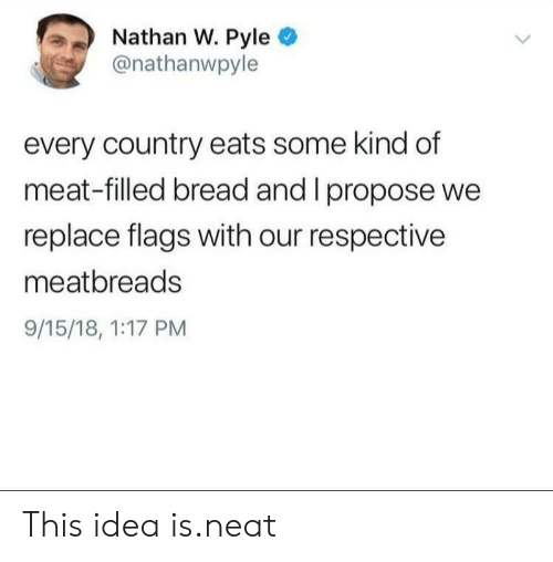 propose: Nathan W. Pyle  @nathanwpyle  every country eats some kind df  meat-filled bread and I propose we  replace flags with our respective  meatbreads  9/15/18, 1:17 PM This idea is.neat