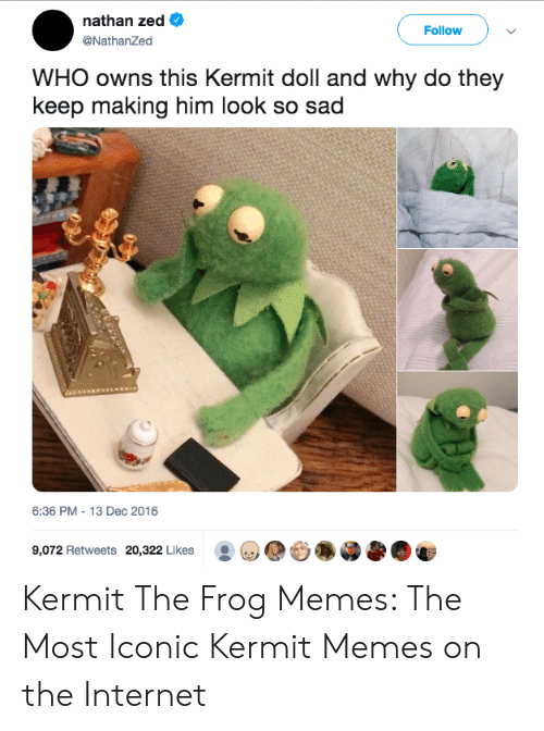 Funny Kermit Memes: nathan zed  NathanZed  Follow  WHO owns this Kermit doll and why do they  keep making him look so sad  6:36 PM - 13 Dec 2016  9,072 Retweets 20,322 Likes .. Kermit The Frog Memes: The Most Iconic Kermit Memes on the Internet
