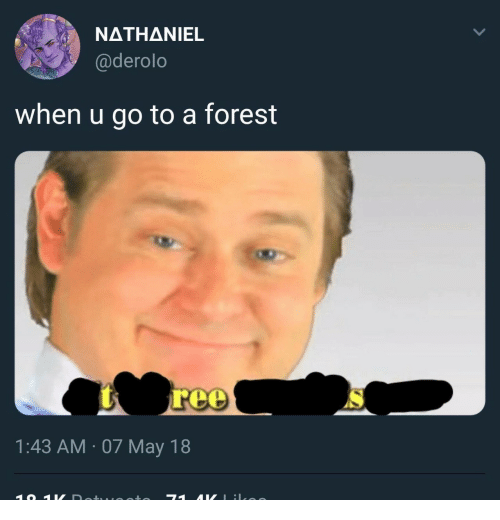 Nathaniel: NATHANIEL  @derolo  when u go to a forest  1:43 AM 07 May 18