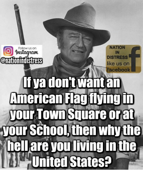 Memes, School, and American: NATION  IN  DISTRESS  like us on  Follow us on  nstadytaum  @nationindistress  acebook  If ya don't want an  American Flag fiyingin  your TOWn Square orat  your School, then whythe  hell are you living in the  United States?