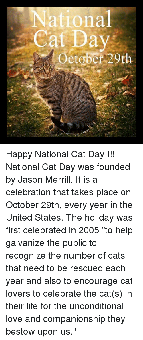"Happy National Cat Day: National  Cat Day  October 20th Happy National Cat Day !!!  National Cat Day was founded by Jason Merrill. It is a celebration that takes place on October 29th, every year in the United States. The holiday was first celebrated in 2005 ""to help galvanize the public to recognize the number of cats that need to be rescued each year and also to encourage cat lovers to celebrate the cat(s) in their life for the unconditional love and companionship they bestow upon us."""
