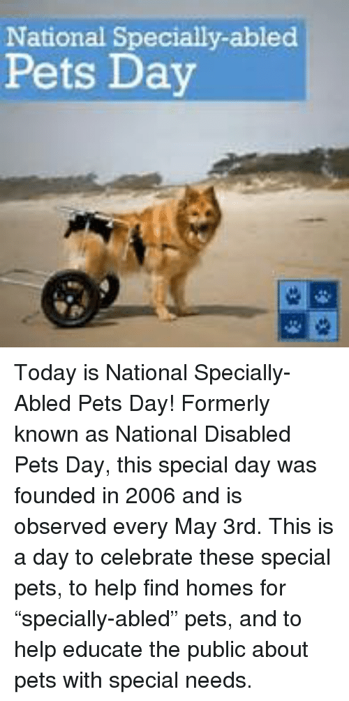 """Memes, Pets, and Help: National Specially-abled  Pets Day Today is National Specially-Abled Pets Day! Formerly known as National Disabled Pets Day, this special day was founded in 2006 and is observed every May 3rd. This is a day to celebrate these special pets, to help find homes for """"specially-abled"""" pets, and to help educate the public about pets with special needs."""