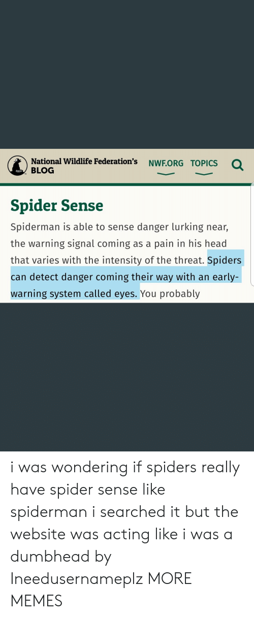 Lurking: National Wildlife Federation's NWF.ORG TOPICs  BLOG  CCCI  Spider Sense  Spiderman is able to sense danger lurking near,  the warning signal coming as a pain in his head  that varies with the intensity of the threat. Spiders  can detect danger coming their way with an early-  warning system called eyes. You probably i was wondering if spiders really have spider sense like spiderman i searched it but the website was acting like i was a dumbhead by Ineedusernameplz MORE MEMES