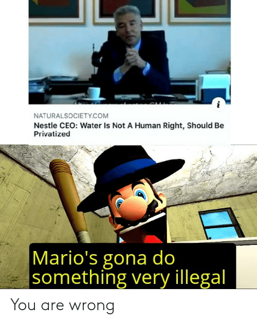 ceo: NATURALSOCIETY.COM  Nestle CEO: Water Is Not A Human Right, Should Be  Privatized  Mario's gona do  something very illegal You are wrong