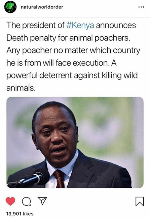death penalty: naturalworldorder  The president of #Kenya announces  Death penalty for animal poachers  Any poacher no matter which country  he is from will face execution. A  powerful deterrent against killing wild  animals.  13,901 likes