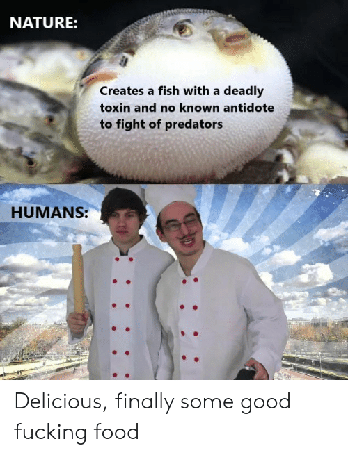 predators: NATURE:  Creates a fish with a deadly  toxin and no known antidote  to fight of predators  HUMANS: Delicious, finally some good fucking food
