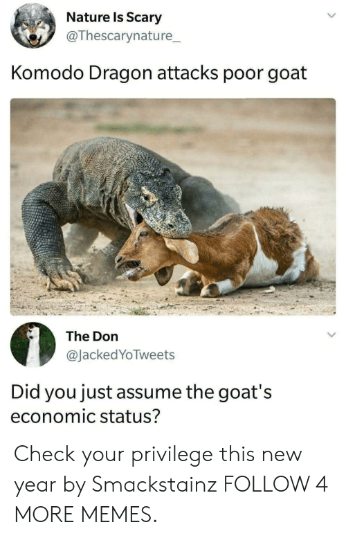 komodo dragon: Nature Is Scary  @Thescarynature_  Komodo Dragon attacks poor goat  The Don  @JackedYoTweets  Did you just assume the goat's  economic status? Check your privilege this new year by Smackstainz FOLLOW 4 MORE MEMES.