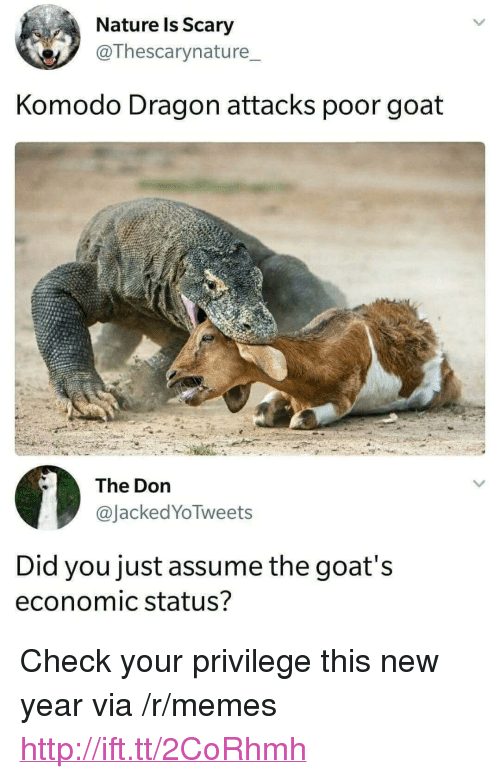 """komodo dragon: Nature ls Scary  @Thescarynature_  Komodo Dragon attacks poor goat  The Dorn  @JackedYoTweets  Did you just assume the goat's  economic status? <p>Check your privilege this new year via /r/memes <a href=""""http://ift.tt/2CoRhmh"""">http://ift.tt/2CoRhmh</a></p>"""