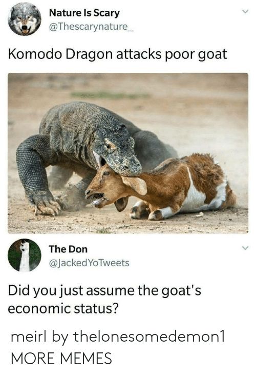komodo dragon: Nature ls Scary  @Thescarynature_  Komodo Dragon attacks poor goat  The Don  @JackedYoTweets  Did you just assume the goat's  economic status? meirl by thelonesomedemon1 MORE MEMES