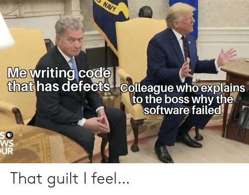 Navy: NAVY  that has defects Colleague who explains  to the boss why the  Me writing code  software failed  WS  UR That guilt I feel…