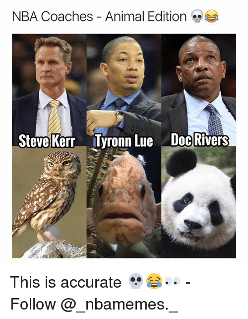 Memes, Nba, and Tyronn Lue: NBA Coaches-Animal Edition  Steve Kerr  Tyronn Lue  Doc Rivers This is accurate 💀😂👀 - Follow @_nbamemes._
