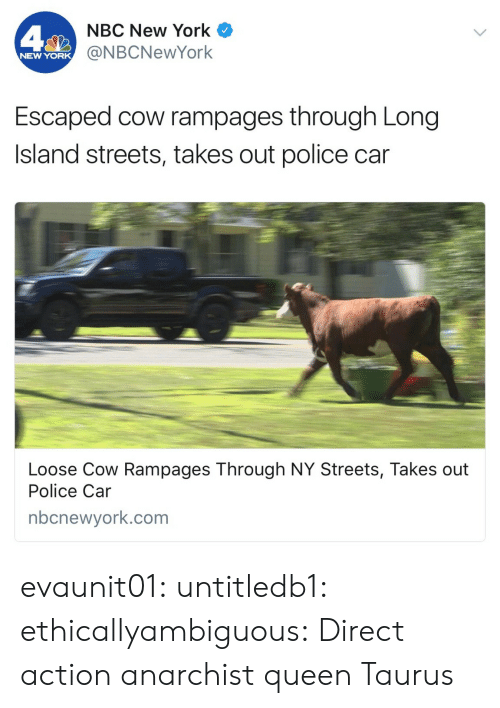 Police Car: NBC New York  @NBCNewYork  NEW YORK  Escaped cow rampages through Long  Island streets, takes out police car  Loose Cow Rampages Through NY Streets, Takes out  Police Car  nbcnewyork.com evaunit01:  untitledb1:   ethicallyambiguous: Direct action anarchist queen   Taurus