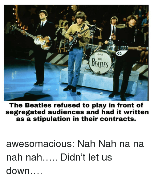 Beatles: ndutg  THE  DEATLES  The Beatles refused to play in front of  segregated audiences and had it written  as a stipulation in their contracts. awesomacious:  Nah Nah na na nah nah….. Didn't let us down….
