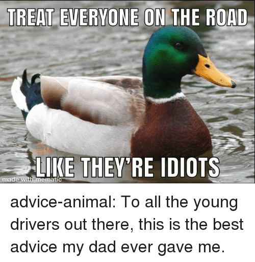 On the Road: NE ON THE ROAD  LIKE THEY RE IDIOTS  made with memati advice-animal:  To all the young drivers out there, this is the best advice my dad ever gave me.