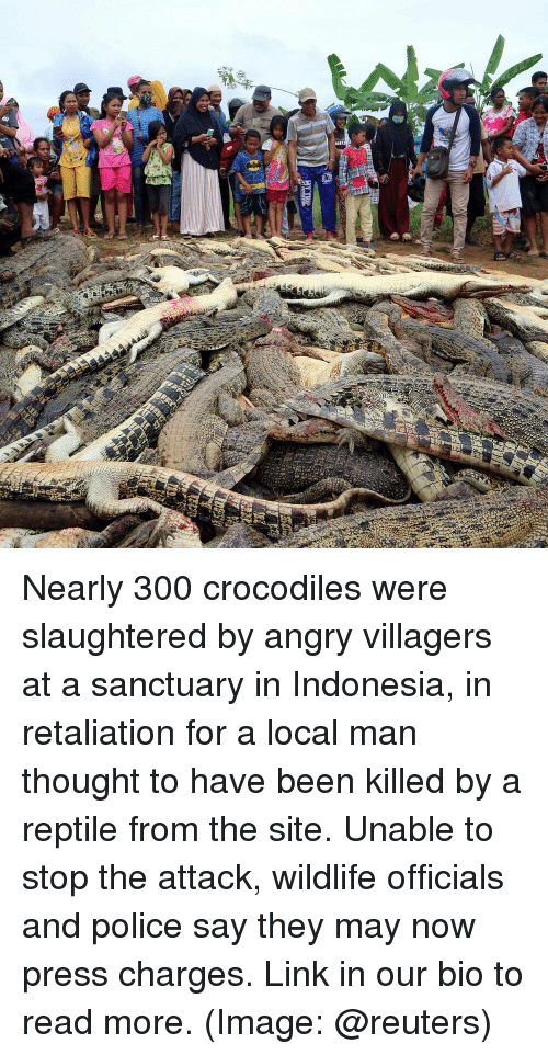 villagers: Nearly 300 crocodiles were slaughtered by angry villagers at a sanctuary in Indonesia, in retaliation for a local man thought to have been killed by a reptile from the site. Unable to stop the attack, wildlife officials and police say they may now press charges. Link in our bio to read more. (Image: @reuters)