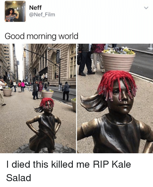 Memes, Good Morning, and Good: Neff  @Nef Film  Good morning world I died this killed me RIP Kale Salad