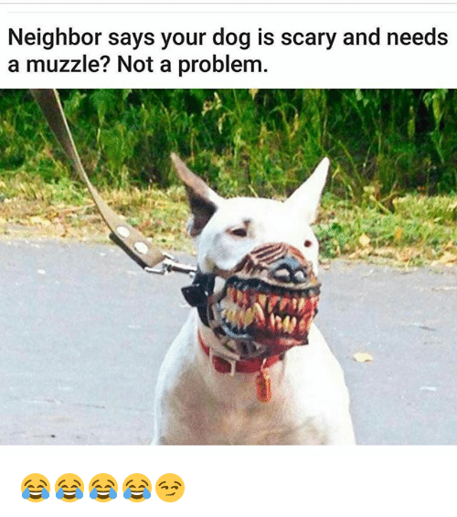 Funny, Dog, and Scary: Neighbor says your dog is scary and needs  a muzzle? Not a problem. 😂😂😂😂😏