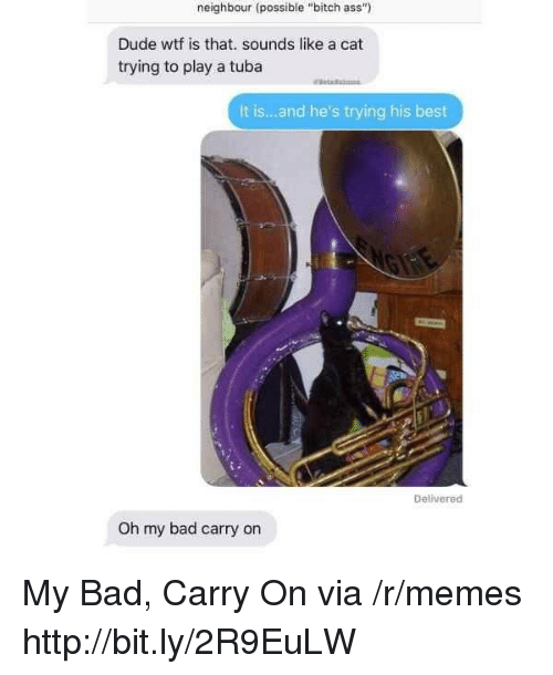 """Wtf Is That: neighbour (possible """"bitch ass""""  Dude wtf is that. sounds like a cat  trying to play a tuba  It is...and he's trying his best  Delivered  Oh my bad carry on My Bad, Carry On via /r/memes http://bit.ly/2R9EuLW"""