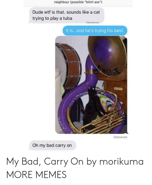 """Wtf Is That: neighbour (possible """"bitch ass""""  Dude wtf is that. sounds like a cat  trying to play a tuba  It is...and he's trying his best  Delivered  Oh my bad carry on My Bad, Carry On by morikuma MORE MEMES"""