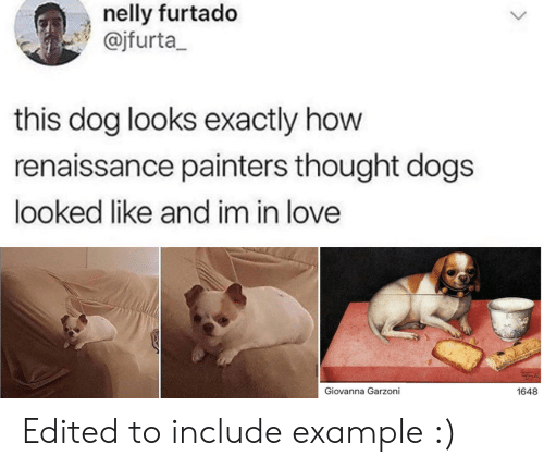 Im In Love: nelly furtado  @jfurta  this dog looks exactly how  renaissance painters thought dogs  looked like and im in love  Giovanna Garzoni  1648 Edited to include example :)