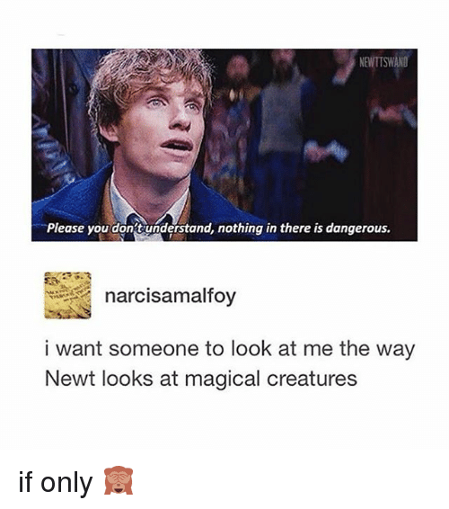 I Want Someone To Look At Me The Way: NENTISWANO  Please you dont understand, nothing in there is dangerous.  narcisa malfoy  i want someone to look at me the way  Newt looks at magical creatures if only 🙈