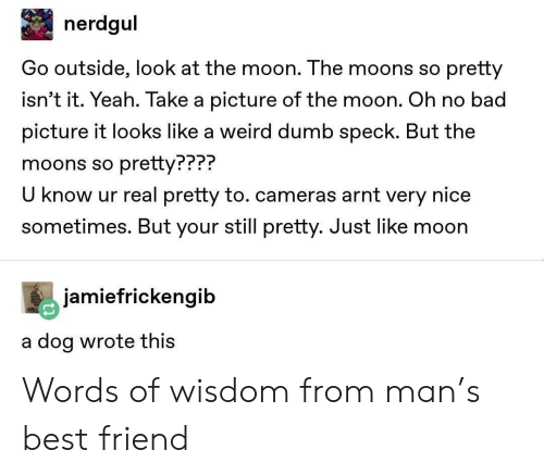 Words Of Wisdom: nerdgul  Go outside, look at the moon. The moons so pretty  isn't it. Yeah. Take a picture of the moon. Oh no bad  picture it looks like a weird dumb speck. But the  moons so pretty???  U know ur real pretty to. cameras arnt very nice  sometimes. But your still pretty. Just like moon  PPP?  jamiefrickengib  a dog wrote thiS Words of wisdom from man's best friend