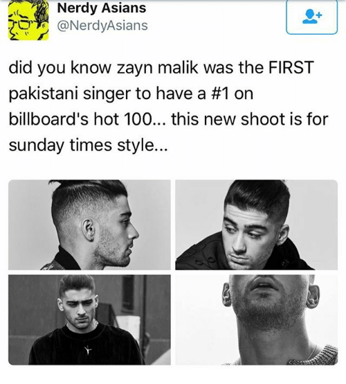 Anaconda, Memes, and Zayn Malik: Nerdy Asians  NerdyAsians  did you know zayn malik was the FIRST  pakistani singer to have a #1 on  billboard's hot 100... this new shoot is for  sunday times style...