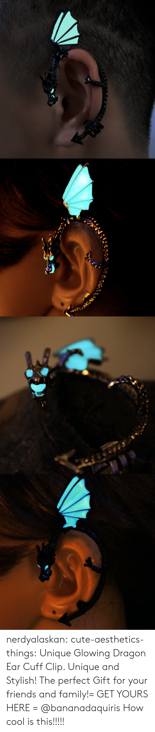 Stylish: nerdyalaskan:  cute-aesthetics-things:  Unique Glowing Dragon Ear Cuff Clip. Unique and Stylish! The perfect Gift for your friends and family!= GET YOURS HERE =  @bananadaquiris  How cool is this!!!!!
