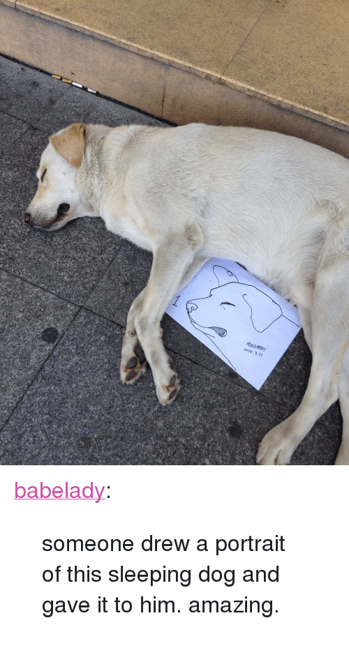 """sleeping dog: ners. 7.3) <p><a class=""""tumblr_blog"""" href=""""http://babelady.tumblr.com/post/125508565419"""" target=""""_blank"""">babelady</a>:</p> <blockquote> <p>someone drew a portrait of this sleeping dog and gave it to him. amazing.</p> </blockquote>"""
