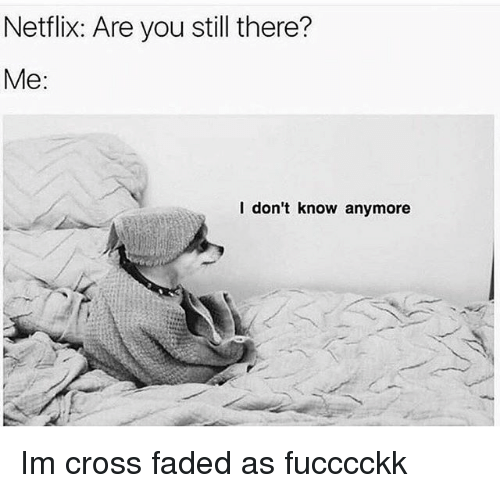 Memes, Netflix, and Faded: Netflix: Are you still there?  Me:  I don't know anymore Im cross faded as fucccckk