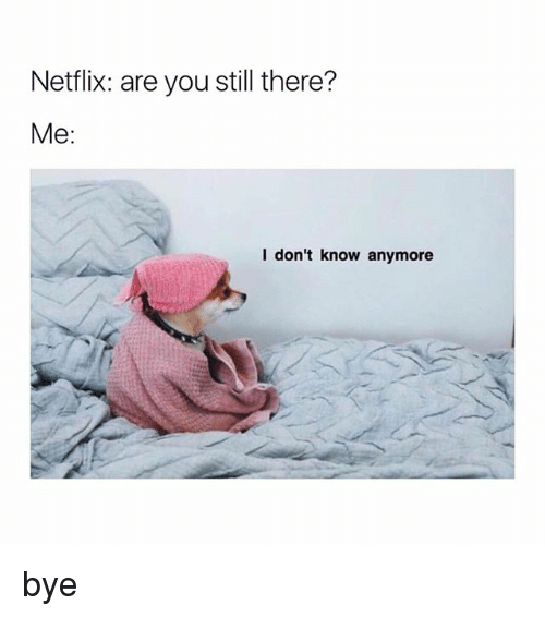 Netflix, Girl Memes, and You: Netflix: are you still there?  Me:  l don't know anymore bye