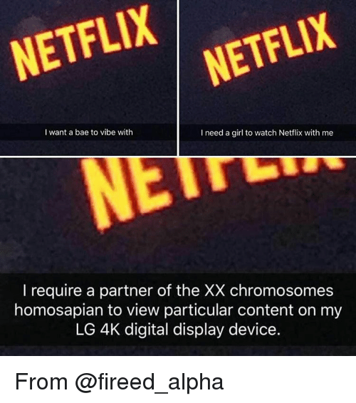 i need a girl: NETFLIX  I want a bae to vibe with  I need a girl to watch Netflix with me  I require a partner of the XX chromosomes  homosapian to view particular content on my  LG 4K digital display device. From @fireed_alpha