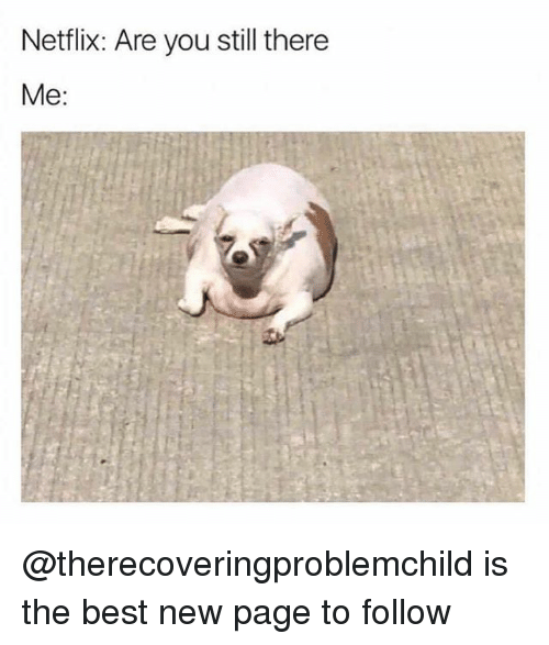 Memes, Best, and 🤖: Netlix: Are you still there  Me: @therecoveringproblemchild is the best new page to follow